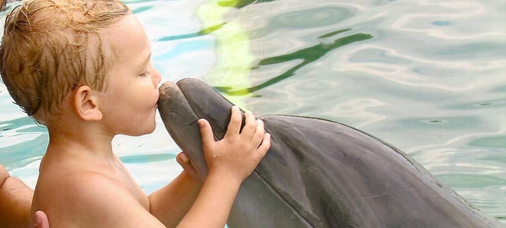 Nadar com golfinhos: Alex beijando Misty