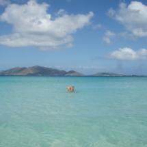 Tortola - Smuggler's Cove 1