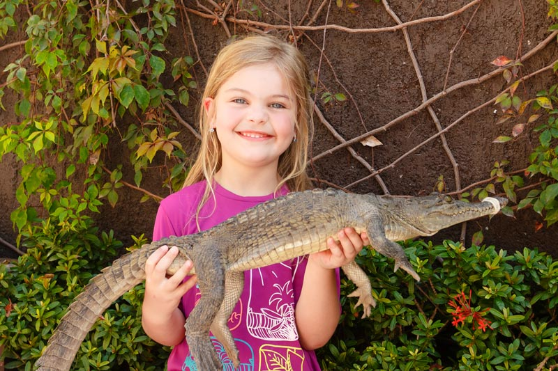 Onde ficar em Puerto Vallarta: Alice segurando crocodilo no Now Amber